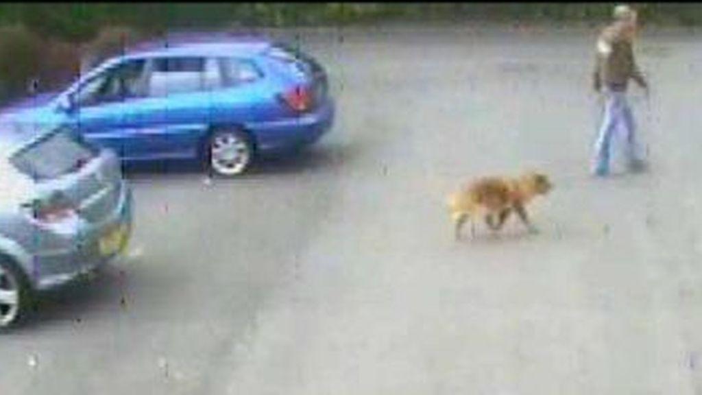 Se busca al hombre que abandonó a Ginger