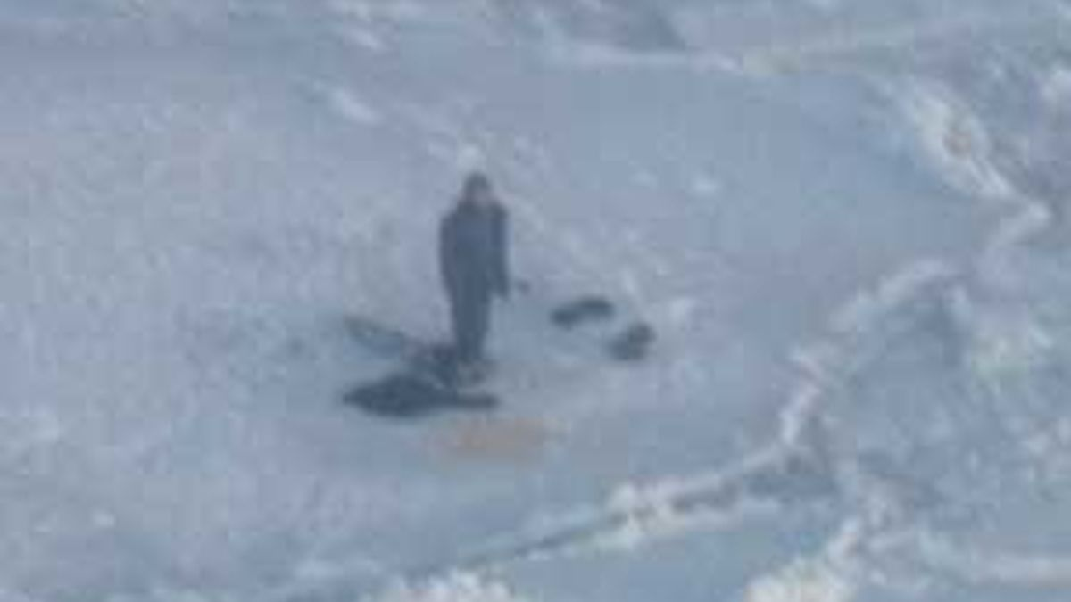 El joven, de 17 años, se encontró solo con tres osos. Vídeo: Informativos Telecinco