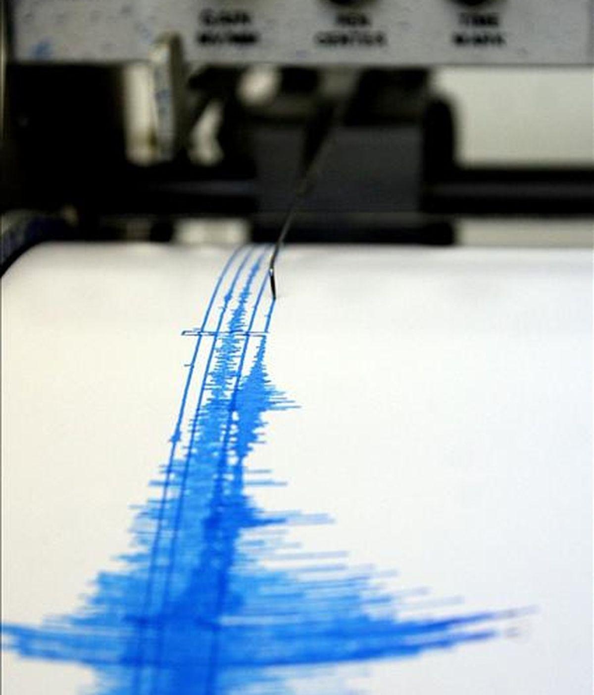 Fotografía de archivo de este 11 de febrero de 2008 de la lectura de un sismógrafo en la ciudad mexicana de Ensenada. EFE/Archivo
