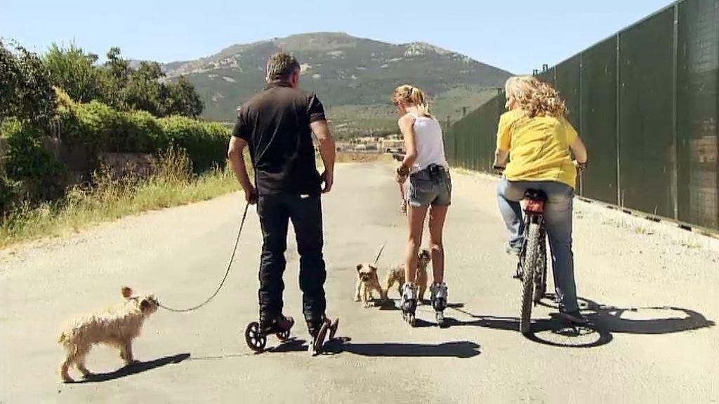 César patina con los perros para ayudarles a hacer ejercicio