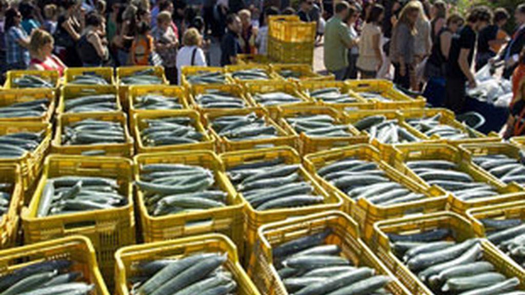 La UE exige a Rusia que levante el veto a las verduras europeas. Vídeo: Informativos Telecinco
