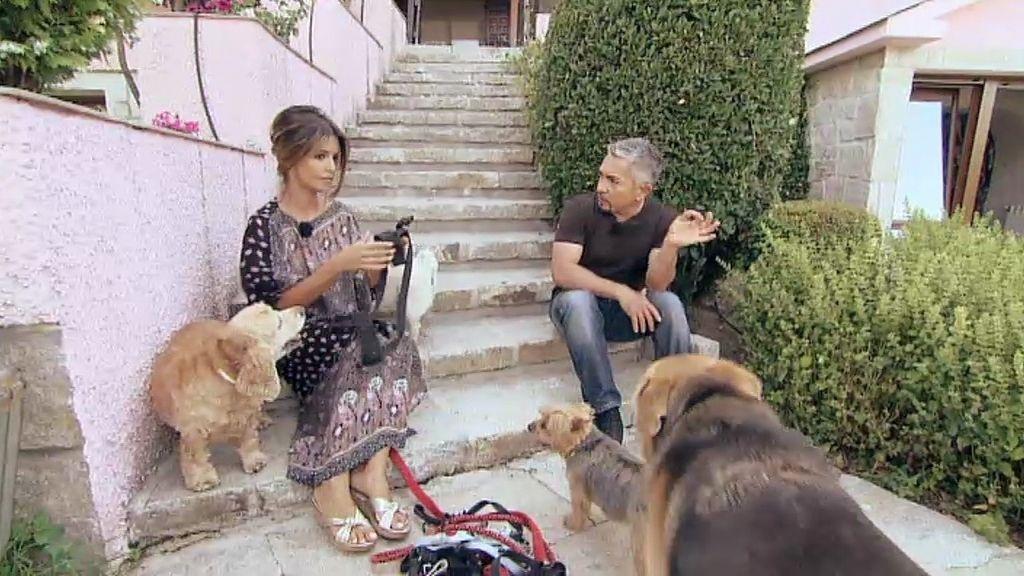 Transmite a todos sus perros su liderazgo y su paz interior