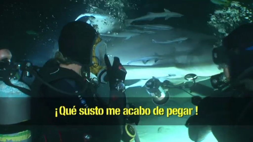 Buceo 3