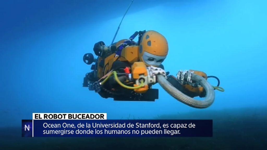 El robot buceador, un amuleto que invoca elfos, la medusa depredadora…