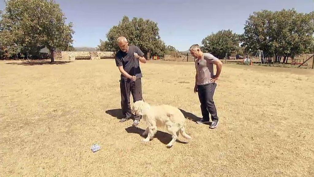 César ha enseñado a Jordi cómo corregir las manías de Bruce