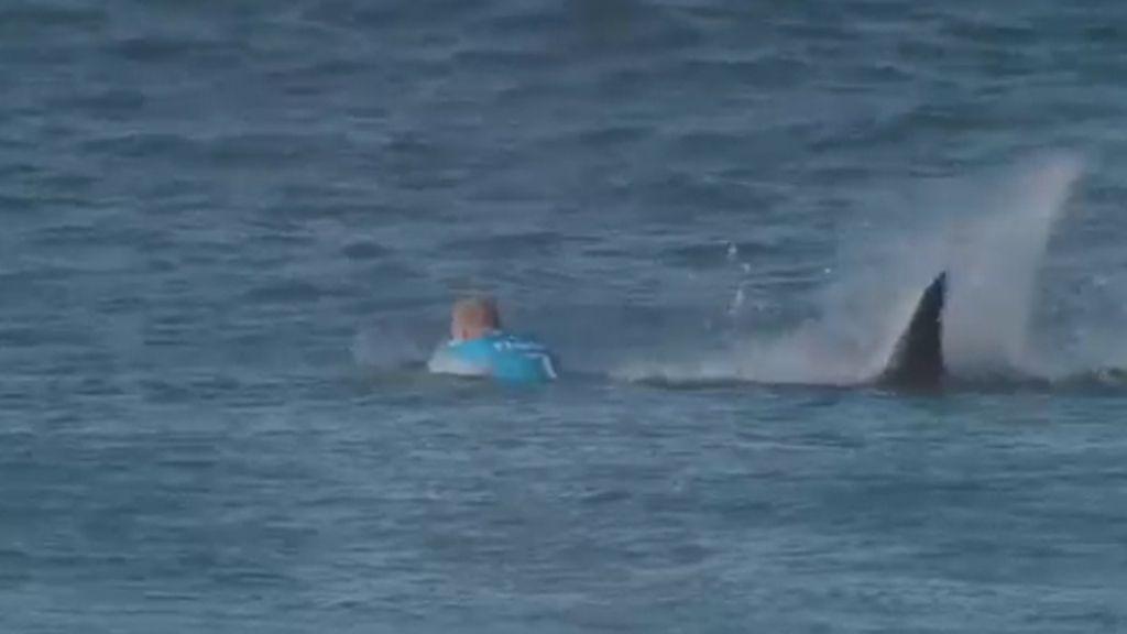 Escalofriante ataque de un tiburón a un tricampeón de surf