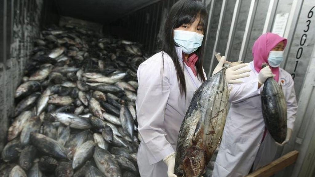 Miembros del Departamento de Salud Alimentaria y Medicamentos toman muestras de pescados provenientes de Japón. EFE/Archivo