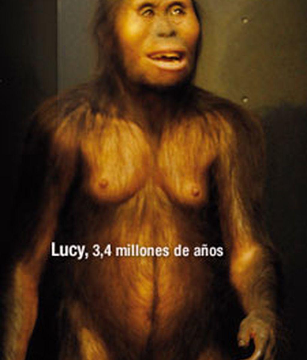 Reconstrucción de cómo sería Lucy. Foto: Museo de la Evolución Humana