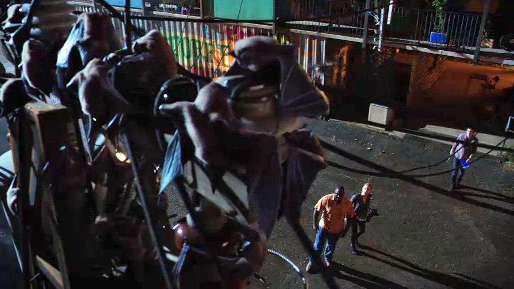 Los murciélagos se esconden en las favelas de Río de Janeiro