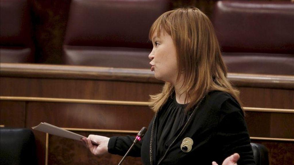La ministra de Sanidad, Política Social e Igualdad, Leire Pajín, durante una intervención en el Congreso. EFE/Archivo