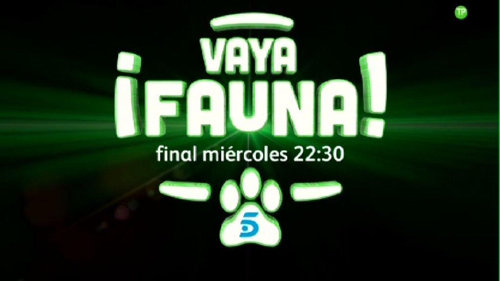 '¡Vaya fauna!', el talent show de animales de Christian Gálvez ¡¡llega a su final!!