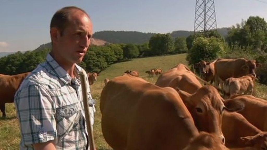 La oficina de Melendi es el campo. Tiene 200 vacas y algunas hasta tienen nombre, una de ellas se llama Pantoja