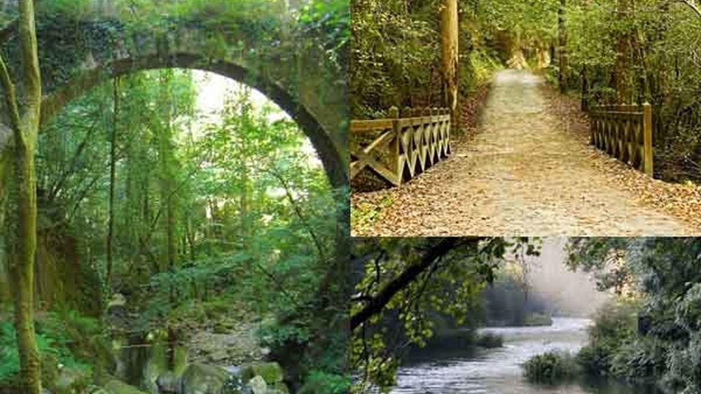 Fragas Do Eume (A coruña): El bosque encantado y encantador