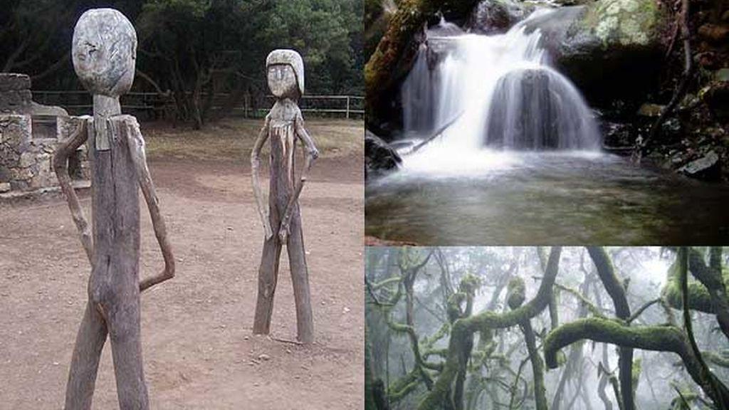 Garajonay: El bosque de los enamorados