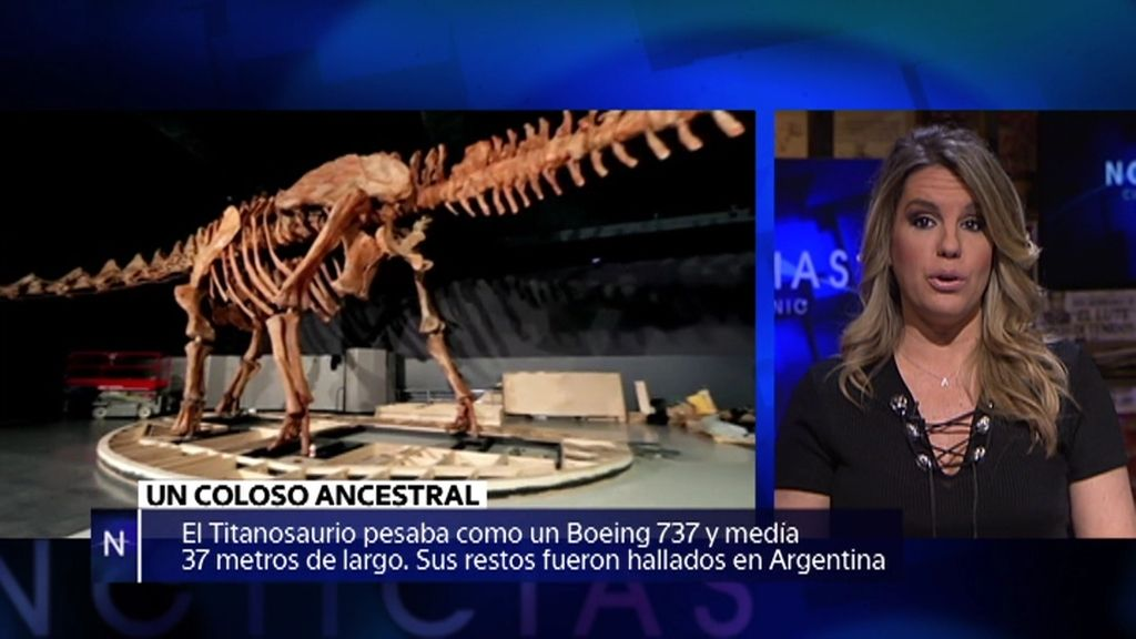 El Titanosaurio, la resurrección de un oso de agua… noticias de la semana