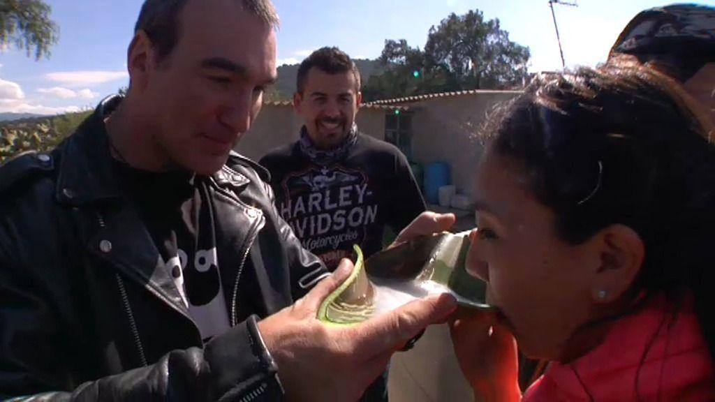 Así se crea el pulque, una bebida alcohólica tradicional de México