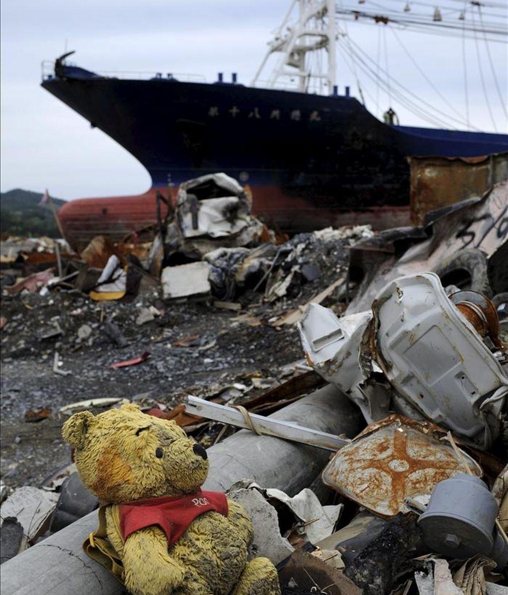 Un osito de peluche rodeado de escombros, en la desolada ciudad de Kesennuma, Japón. Casi 15.000 muertos confirmados por el seísmo de hace dos meses en Japón. EFE