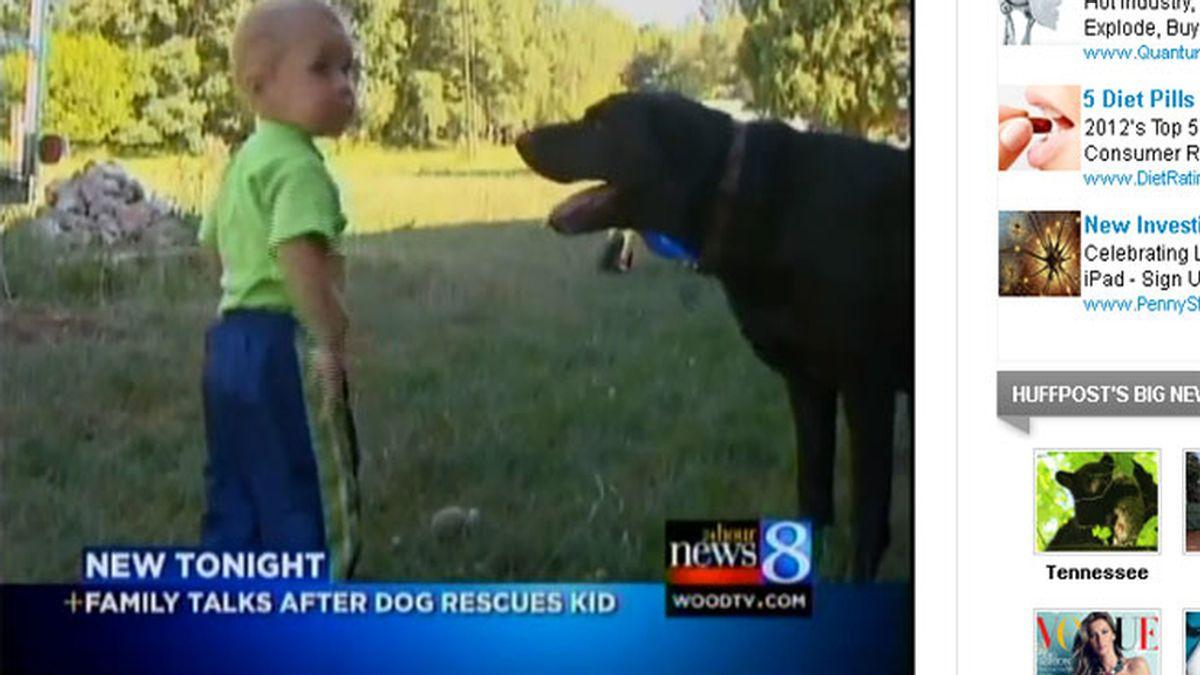 Un perro salva la vida a un bebé