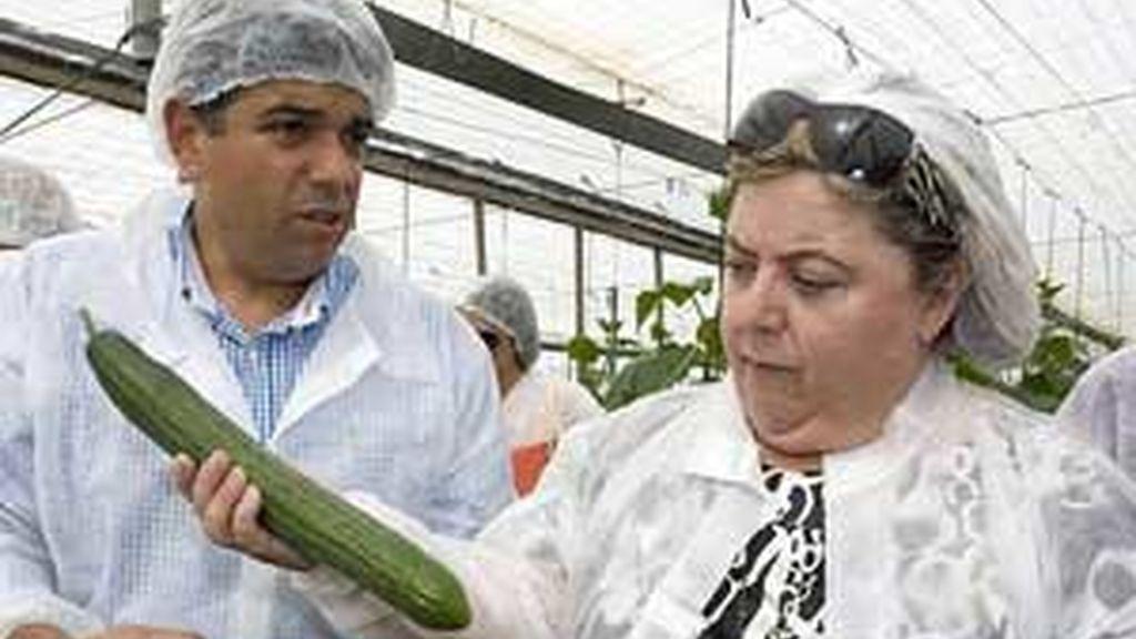 La consejera andaluza de Agricultura, Clara Aguilera, durante una visita a una explotación de pepinos. Foto: EFE/Archivo