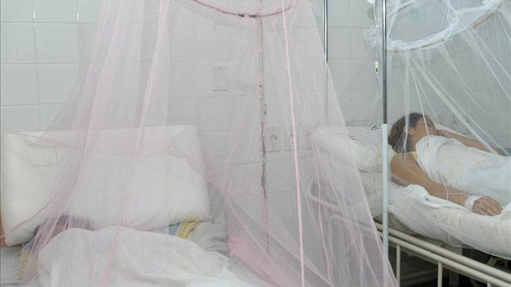 El más reciente de los fallecimientos por dengue en Latinoamérica se confirmó hoy en Iquitos, capital de la región peruana de Loreto, donde la avalancha de casos ha sobrepasado la capacidad del hospital de la ciudad y obligado a instalar 40 camas adicionales. EFE/Archivo