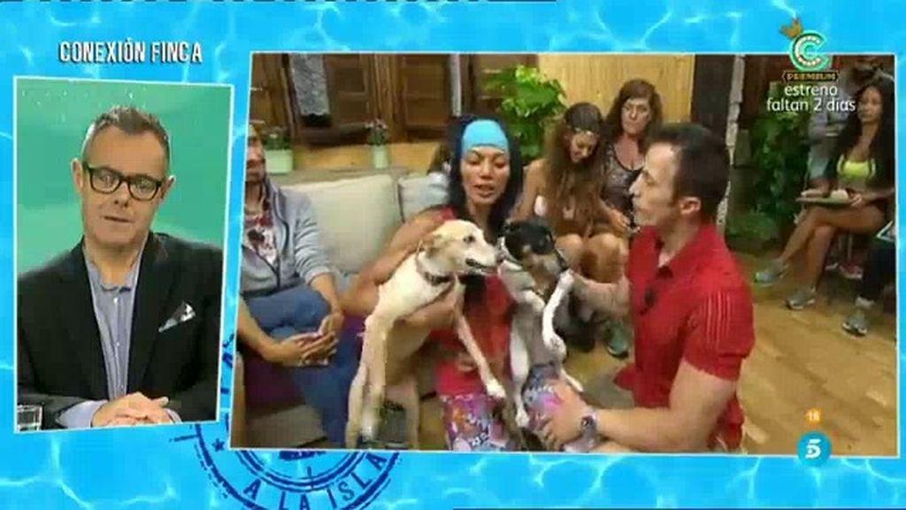 Two Yupa, emocionada con la visita sorpresa de sus perros y de su chico