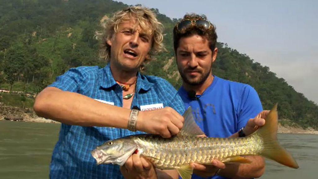 David Bisbal supera el reto y consigue pescar el Golden masher
