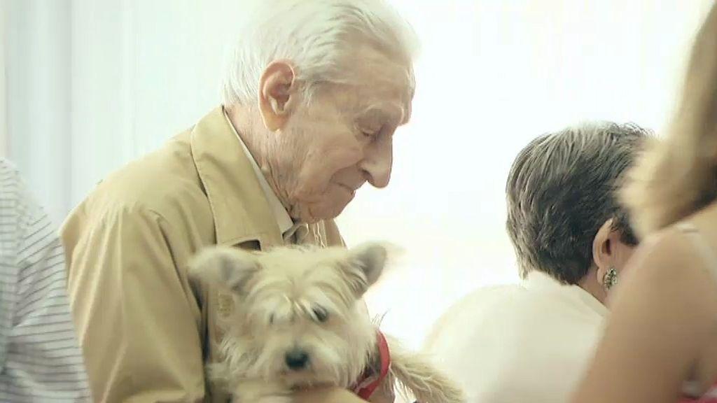 Los perros pueden ayudar mucho a las personas mayores