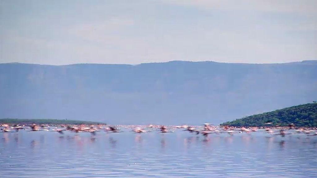 Un paseo por el Lago Victoria