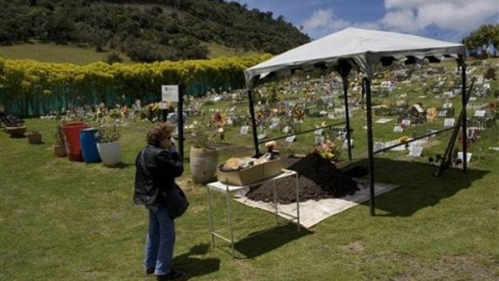 Los cementerios de perros, negocio prometedor en Colombia