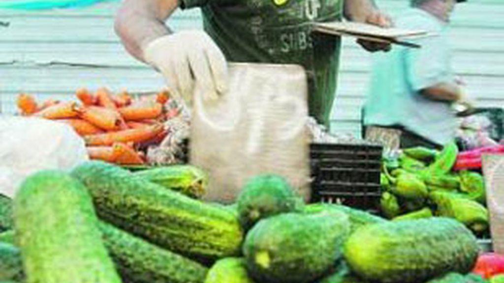 Un vendedor de pepinos de Alemría. Foto: EFE