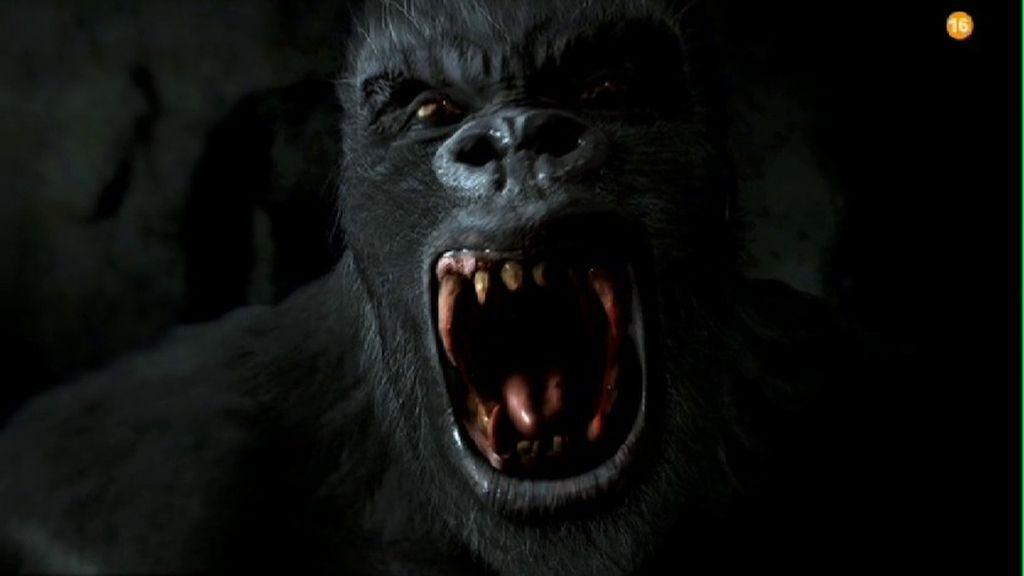 Prepárate para el ataque… 'La noche más salvaje' llega este sábado a Energy