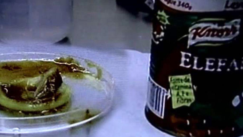 condón, preservativo en un bote de tomate