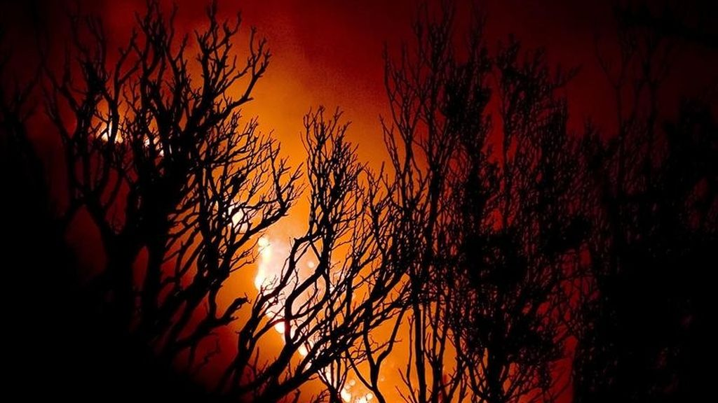 Los incendios forzaron ayer la evacuación de tres localidades y causaron daños generalizados en varios condados al oeste del área metropolitana de Dallas y Forth Worth. EFE/Archivo
