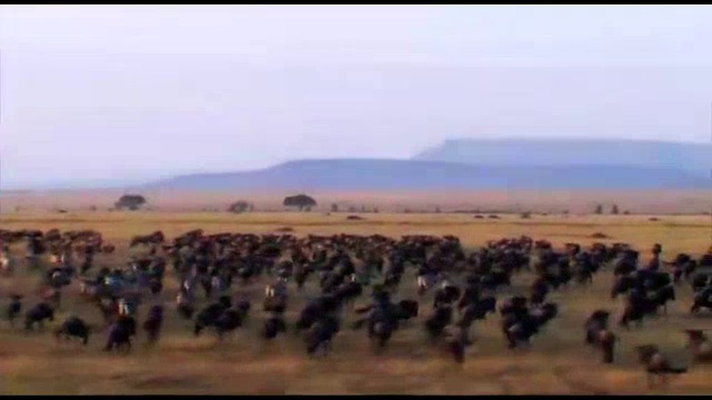 El Parque Nacional de Masai Mara