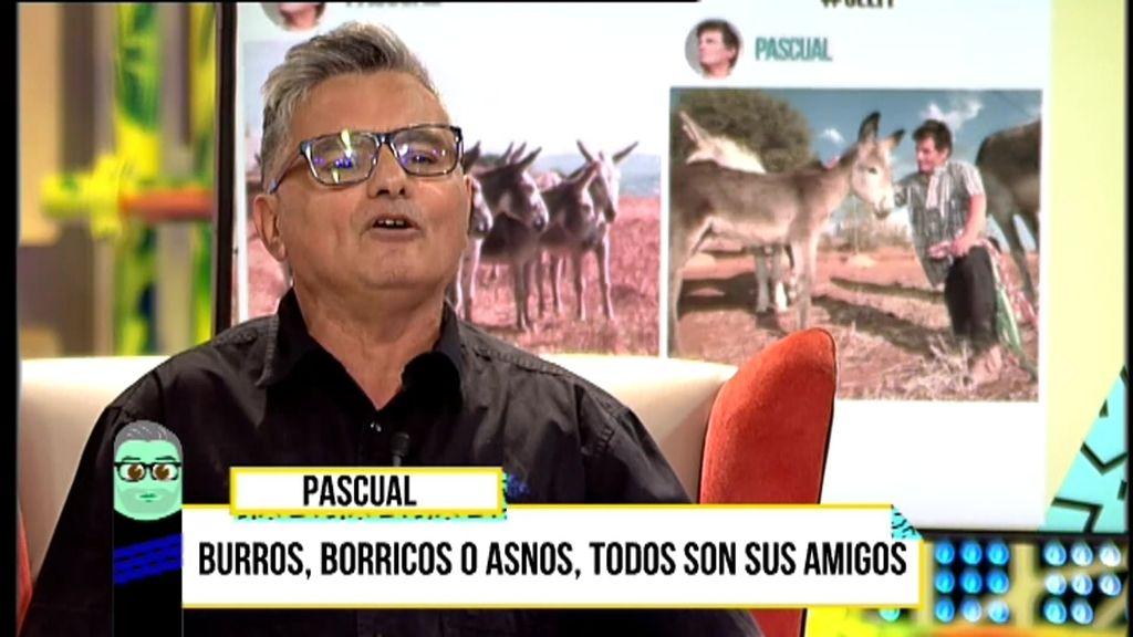 Pascual recibió una inesperada herencia millonaria para cuidar a sus borricos