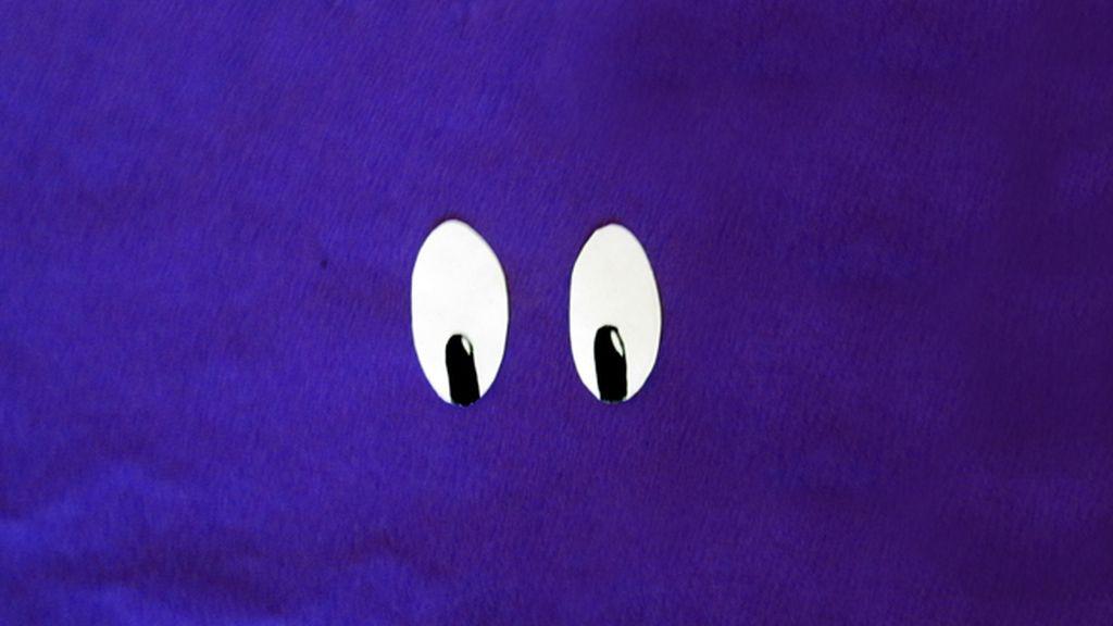 8. Los ojos