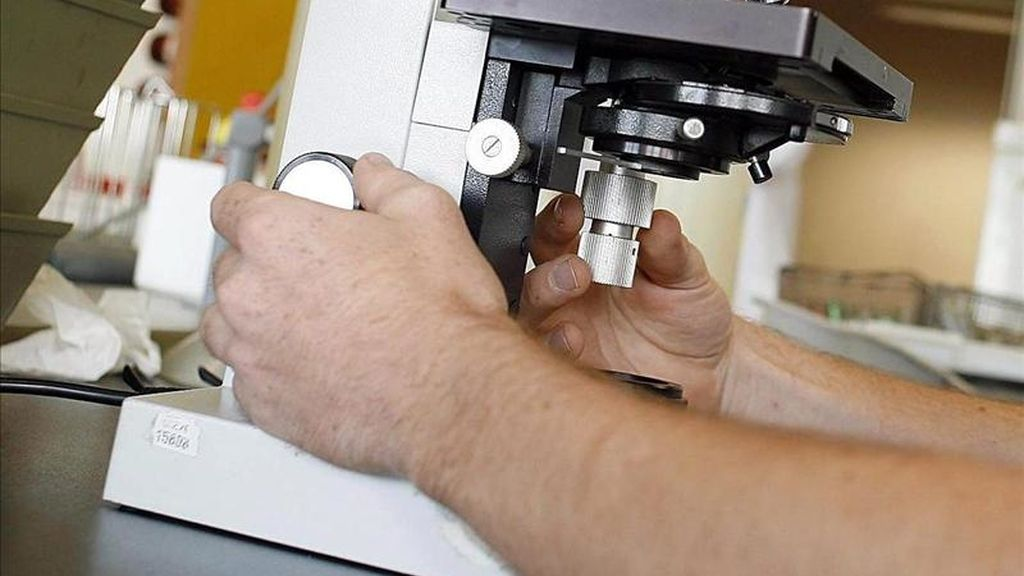En la imagen, un laboratorio. EFE/Archivo