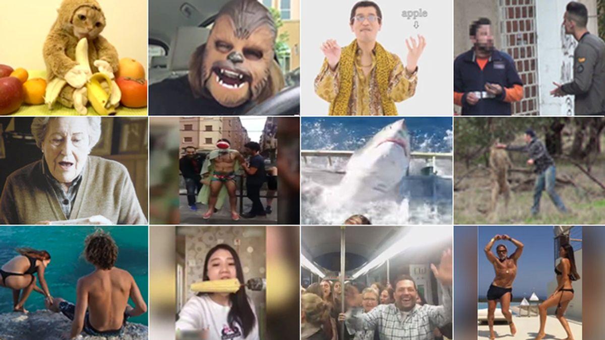 Los vídeos virales de 2016 que han arrasado en la Red