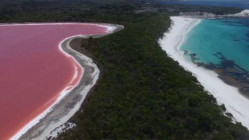 Mundo insólito: un hombre valle, un lago rosa, un perro con dos hocicos…