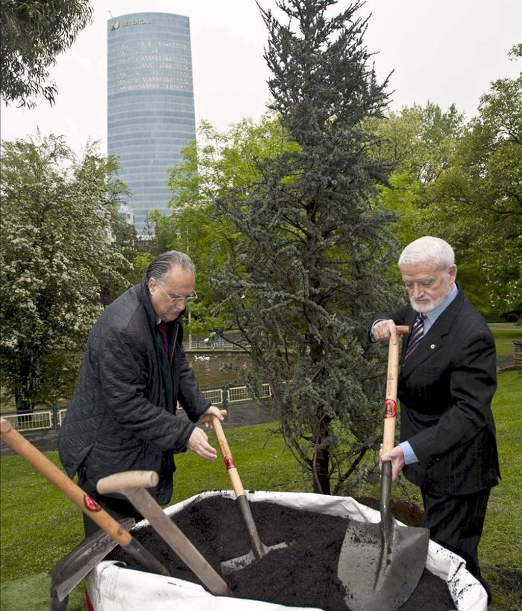 El alcalde de Bilbao, Iñaki Azkuna (izda), y el presidente del Centro Español de Derechos Reprográficos, Juan Mollá, plantan un como símbolo del respeto que merece la propiedad intelectual de autores y editores. EFE