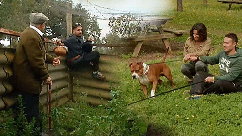 El glamour de Duna, Rocky y Evans entre ovejas y gallinas no tiene desperdicio