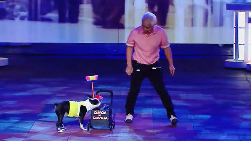 Mia, Tuxedo y Guizmo, los perros de Kang se reinventan con un nuevo espectáculo