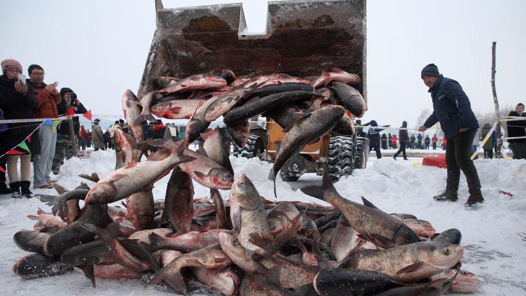 Festival de invierno de pesca en China