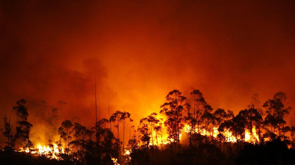 Incendio en Fragas do Eume