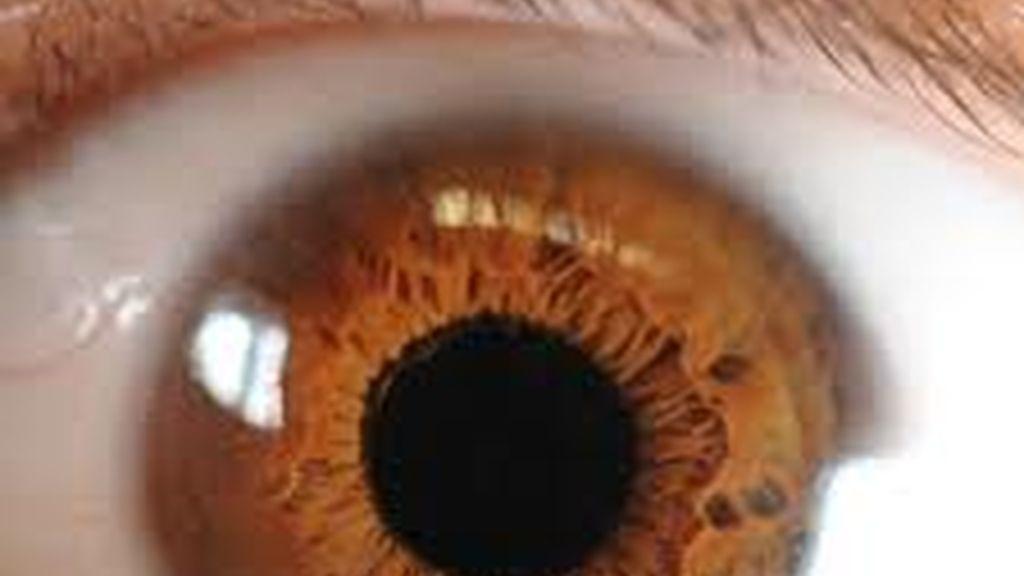 ojo humano, córnea, mirada