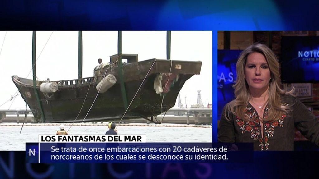 Barcos fantasma, reina Nefertitti y calamar gigante… noticias de la semana