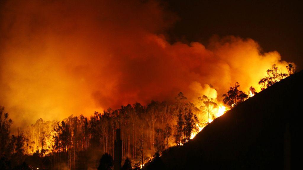 El fuego devora Fragas do Eume