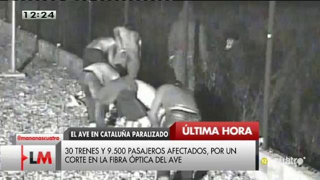 Un robo de cable paraliza la circulación de las líneas de AVE y Alvia en Cataluña