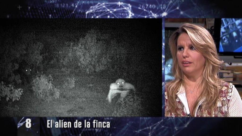 Los virales: La nueva plaga que está arrasando por internet