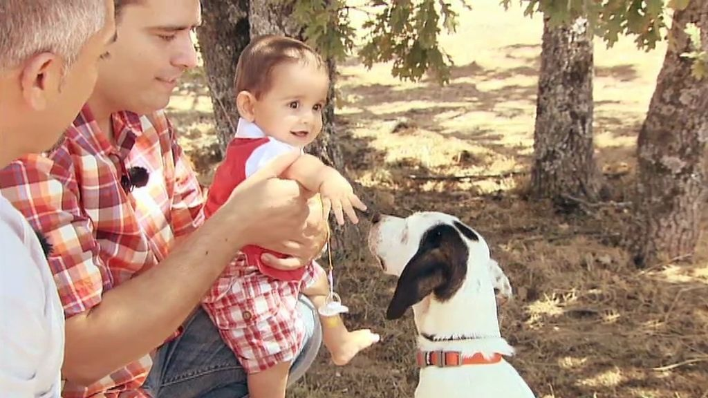 Vive acompañado de dos gatos, un bebé y sus dos nuevos amos